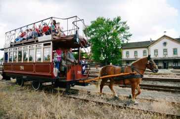 Budapest, 2013. június 1. A Móni nevû ló húzza a nosztalgia lóvasutat az angyalföldi pályaudvar közelében 2013. június 1-jén, a XIII. kerület 75. születésnapján tartott rendezvényen. MTI Fotó: Beliczay László