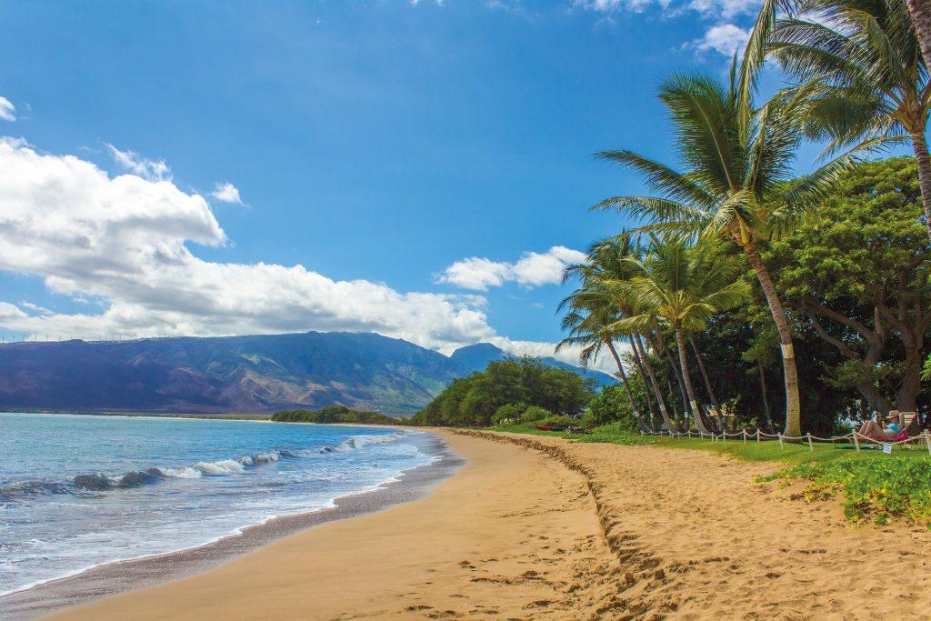 beach-1630540_1920-1024x683.jpg